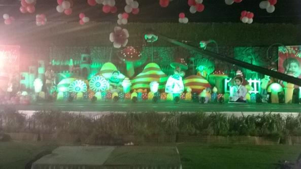 birthday party decorators, kids birthday party organisers in hyderabad www.shobhasentertainments.org (20)