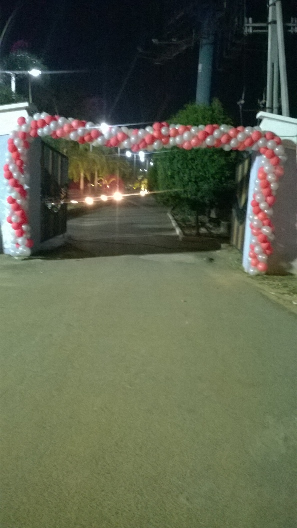 birthday party decorators, kids birthday party organisers in hyderabad www.shobhasentertainments.org (24)