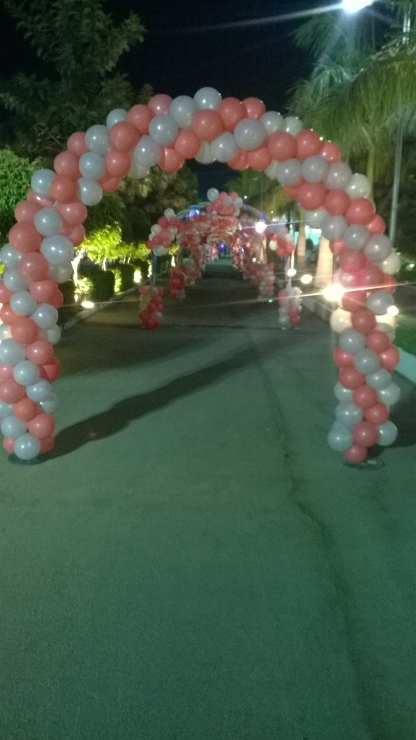 birthday party decorators, kids birthday party organisers in hyderabad www.shobhasentertainments.org (27)