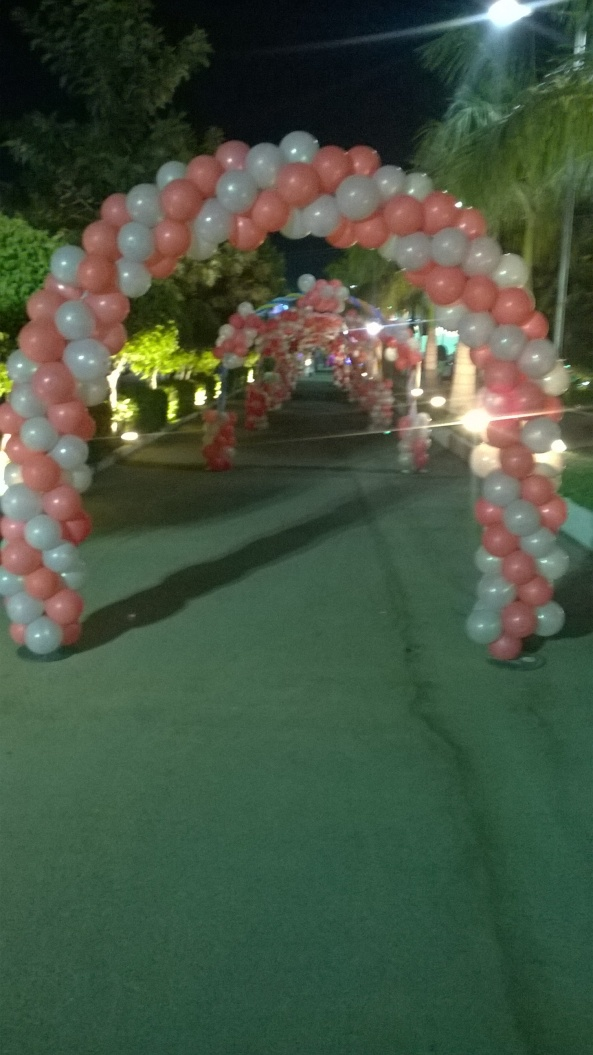 birthday party decorators, kids birthday party organisers in hyderabad www.shobhasentertainments.org (28)