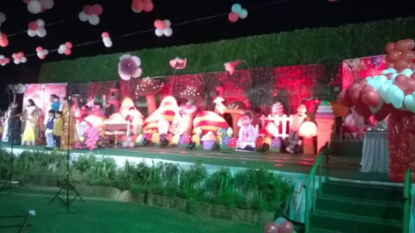 birthday party decorators, kids birthday party organisers in hyderabad www.shobhasentertainments.org (35)
