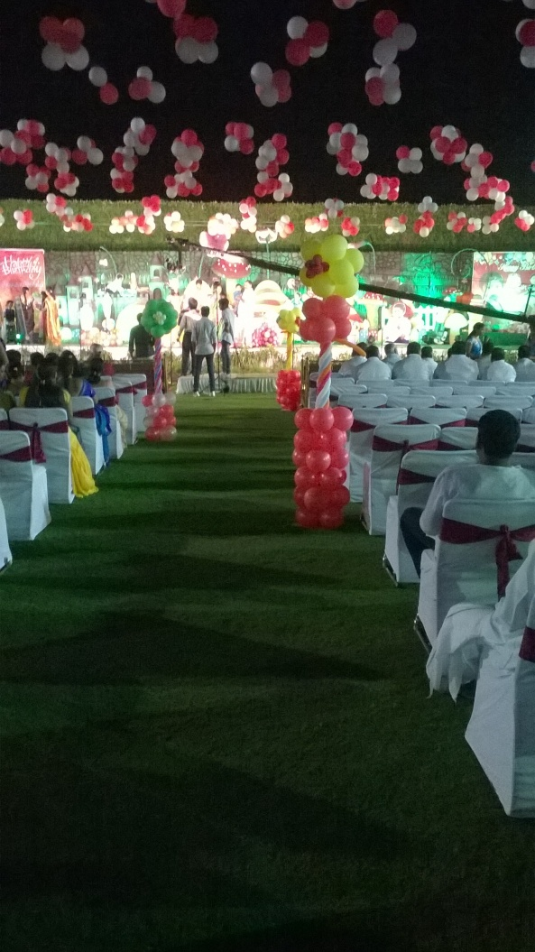 birthday party decorators, kids birthday party organisers in hyderabad www.shobhasentertainments.org (48)