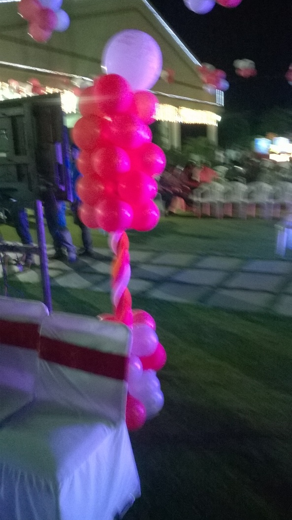 birthday party decorators, kids birthday party organisers in hyderabad www.shobhasentertainments.org (52)