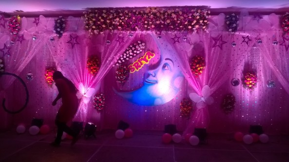 exclusive birthday party decorations (12)