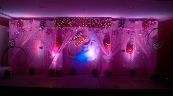 exclusive birthday party decorations (5)