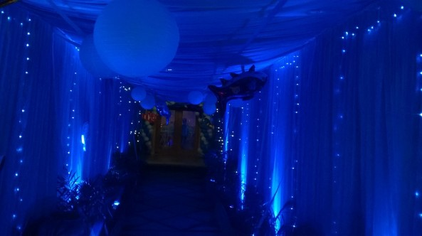 Nemo Underwater theme birthday party organizers in Warangal Hyderabad Telangana Andhra Pradesh (2)