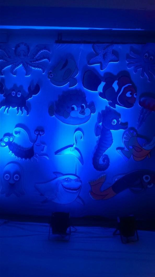 Nemo Underwater theme birthday party organizers in Warangal Hyderabad Telangana Andhra Pradesh (7)
