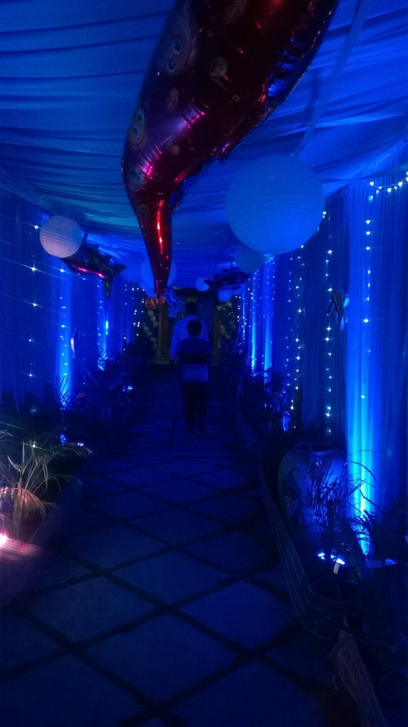 Nemo Underwater theme birthday party organizers in Warangal Hyderabad Telangana Andhra Pradesh (8)