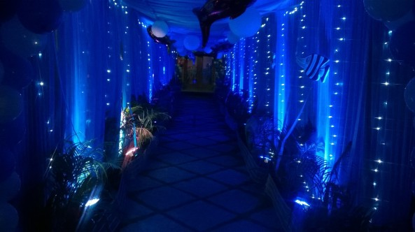 Nemo Underwater theme birthday party organizers in Warangal Hyderabad Telangana Andhra Pradesh