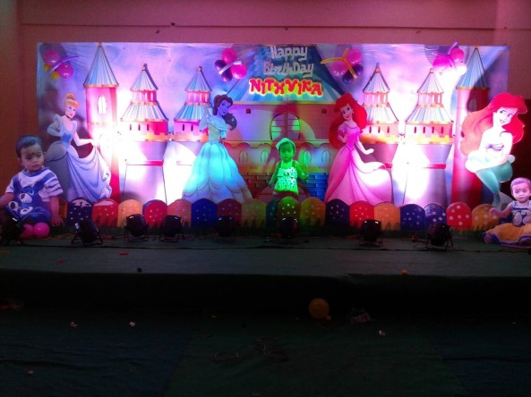 catsle theme birthday party organizers